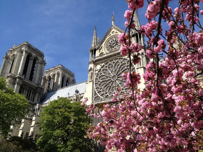Springtime, my favourite of all the seasons in Paris