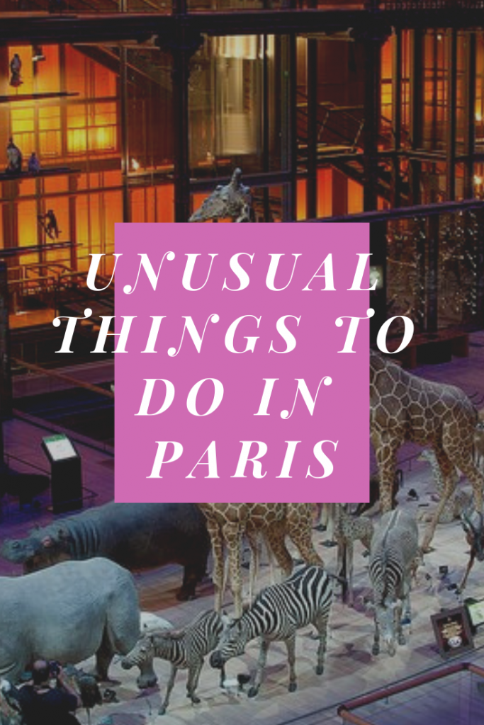 unusual things to do in Paris pin