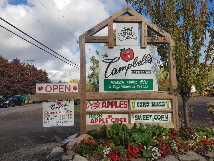 Belleville Apple Orchards Pumpkin Patches, Campbell's Orchards