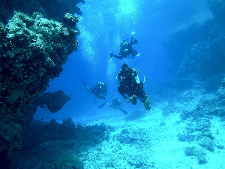 Scuba Diving  - Things to do in Negril